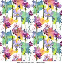 Stock Photo: Wildflower aster flower pattern in a watercolor style. Full name of the plant: aster. Aquarelle wild flower for background, texture, wrapper pattern, frame or border. -