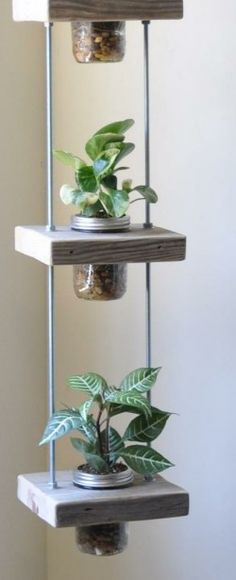 Vertical Planting - 19 creative ideas and tips for vertical gardening - wohnen - Plantio Mason Jar Plants, Plants In Jars, Succulents In Containers, Mason Jars, Pot Plants, Vertical Planting, Plant Holders, Hanging Planters, Small Gardens
