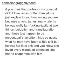 Oh the feels omg Harry Potter Facts, Harry Potter Quotes, Harry Potter Books, Harry Potter Love, Harry Potter Fandom, James Potter, The Marauders, Drarry, Mischief Managed