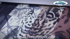 Classic 100gsm quick dry anti curl sublimation paper for Epson SC F-series
