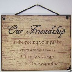 SIGN FRIENDSHIP is like peeing pants everyone can see funny girl friend