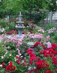 Gorgeous Rose cottage garden landscaping design ideas #iffygarden #garden #garden ideas