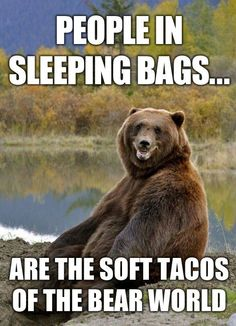People in sleeping bags are the soft tacos of the bear world.
