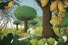Agrofloresta