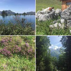 Unsere schöne Bergwelt Schweiz
