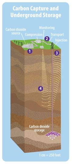 This diagram shows the major parts of a system for capturing carbon dioxide and storing it underground. Numbers on the diagram correspond with the steps listed on the page. - Are there any cons to doing this??