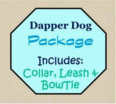Collar, Leash and Bowtie Attachment Package!  Dog Collar Set, Dog Bowtie Set - Dapper Dog Package! by katiesk9kollars on Etsy