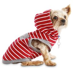 Bond+&+Co.+Red+Striped+Dog+Hoodie+-+Slip+on+the+Bond+&+Co.+Red+Striped+Dog+Hoodie+to+give+your+pup+a+layer+of+stylish+warmth. - https://www.petco.com/shop/en/petcostore/product/bond-and-co-red-striped-dog-hoodie