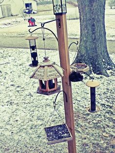 Bird feeder station- I would make each bird feeder the same so it could have uniform but I'd paint each one a different color.