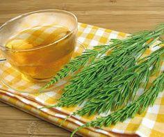 Porady Herrbaty : Skrzyp polny - ziółko na wiele dolegliwości Natural Cosmetics, Seaweed Salad, Healthy Drinks, Carrots, Cabbage, Remedies, Skin Care, Homemade, Vegetables