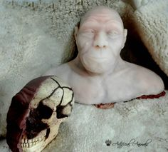 Homo neanderthalensis. Reconstrucción forense sobre el cráneo. Halloween Face Makeup, Sculpture, Statue, Art, Art Background, Kunst, Sculpting, Performing Arts, Sculptures