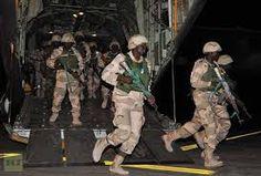 nodullnaija: Niger's Air Force Bombed a Boko Haram Base