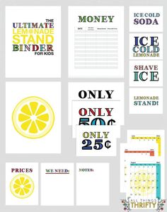 Create a lemonade stand binder- encourage hard work and entrepreneurship while having fun! Fun kids activity this summer. | All Things Thrifty for http://www.thirtyhandmadedays.com