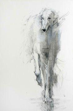 Perro dibujo ilustración galgo dog draw