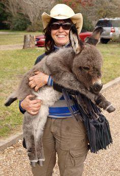 Baby donkey!!