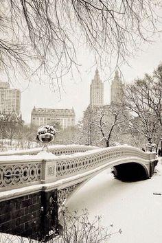 Un país de las maravillas de invierno en Central Park NewYork EE.UU.