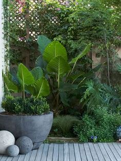 how to make a small patio appear larger - Google Search