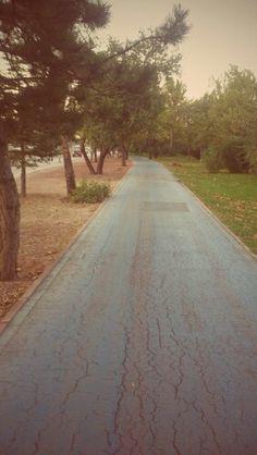 Bike Way
