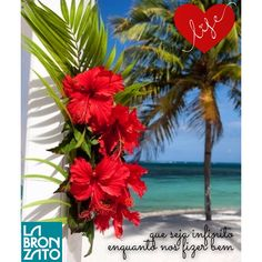 ❤️ que seja infinito enquanto nos fizer bem! ❤️ #amem #boanoite #alohaweekend #fridaynight #fridayfeelings   #labronzato #modapraia #multimarcas #feminino #masculino #infantil #biquini #maiô #sunga #beachwear ⛵️ #ferias #fimdesemana #praia #piscina #clube #araguaia #summertime #goiania #goias #brasil ➡️ follow: @labronzato