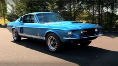 Powerful And Mysterious Shelby Mustang 427 de 1967 Ford Mustang 1967, Mustang Cobra, Mustang Fastback, Ford Mustangs, 1967 Shelby Gt500, Ford Mustang Shelby, Grand Torino, Pony Car, American Muscle Cars