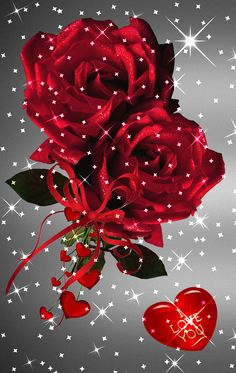 1 million+ Stunning Free Images to Use Anywhere Beautiful Rose Flowers, Flowers Gif, Beautiful Flowers Wallpapers, Amazing Flowers, Roses Gif, Love Heart Images, Rose Images, Flower Images, I Love You Images