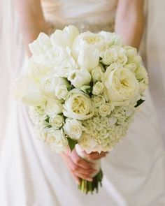 The bridal bouquet will be a clutch of cream hydrangeas, ivory garden roses, white tulips, and ivory spray roses wrapped in soft gold ribbon.