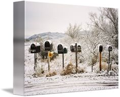 """""""mailboxes"""" by Valeria Watson, Asheville // snowy mailboxes on Yoruba Basin Trail, Tombstone, Arizona // Imagekind.com -- Buy stunning fine art prints, framed prints and canvas prints directly from independent working artists and photographers."""