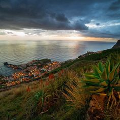 Sunset at Madeira #madeiraisland #landscape #nature #SonyAlpha #SonyImages #amazingview #madeira #traveling #travelphoto #traveladdict #travelbible #natureporn #nature #trip #sunset #sunset_vision #backpackerlife #globetrotter #traveltheworld #travelgram #travellife #travellifestyle #seetheworld #discoverearth #podróżemałeiduże #wakacje