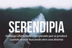 SERENDIPIA Cute Words, Weird Words, Pretty Words, New Words, Beautiful Words, Words Quotes, Me Quotes, Great Quotes, Inspirational Quotes