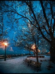 I'd love to take my wife to a city with snow on the ground and walk thru the park hand-in-hand!