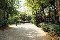 Şehir merkezinde, sahil yolunda, doğayla iç içe, yaşayan kampüs ortamı.