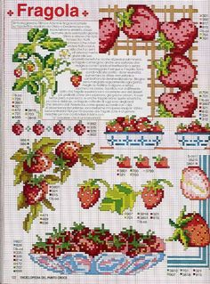 (1) Gallery.ru / Photo # 76 - EnciclopEdia Italiana Frutas e verduras - natalytretyak