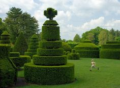 Topiary Gardens | State-by-State Gardening Web Articles
