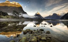 Things not to Miss -    #01 Milford Sound  Experience the grandeur and beauty of Fiordland on the area's most accessible fiord, great in bright sunshine and wonderfully atmospheric in the mist with the waterfalls at their most impressive.      #02 Tree ferns  Sometimes reaching …