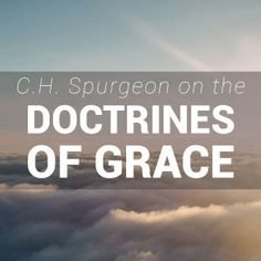 Spurgeon enthusiastically proclaimed the tenets of Reformed Theology, and the Doctrines of Grace feature heavily in both his sermons and written works Ch Spurgeon, Spurgeon Quotes, Charles Spurgeon, Scripture Quotes, Jesus Quotes, Christian Life, Christian Quotes, Whatever Is True, Reformed Theology