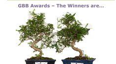 Die fünften GBB Awards: Smart City Graz Mitte, KAGES und BELIMO ausgezeichnet Awards, Herbs, Plants, Graz, Sustainability, Herb, Plant, Planets, Medicinal Plants