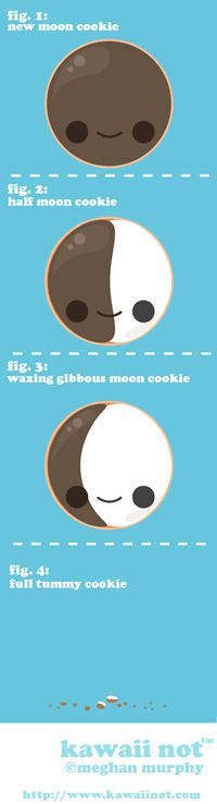 The phases of the moon. As interpreted by a half moon cookie. (Kawaii Not Comic)
