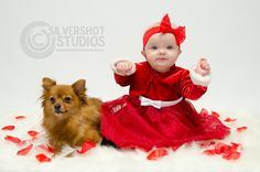Baby Girl Dog Puppy Red Dress Rose Petals Valentines Day