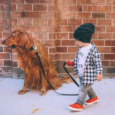 """""""Come on, Chauncey... Goin on a walk!"""" ❤️ #atticusandchauncey"""