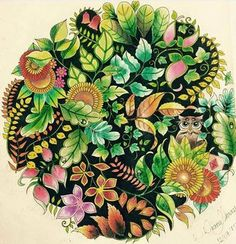 Owl In Autumn Enchantedforest Johannabasford Finished Inspired
