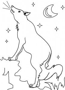 Coyote Coloring Pages Printable Coloring Pages Coloring Pages For Kids Free Coloring Pages