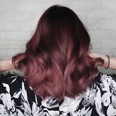 Résultats de recherche d'images pour « rose brown hair »