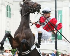 McCraken and Brian Hernandez at Churchhill Horse Mane Braids, Derby Horse, Sport Of Kings, Thoroughbred Horse, Racehorse, Clydesdale, Horseback Riding, Courses, Kentucky Derby