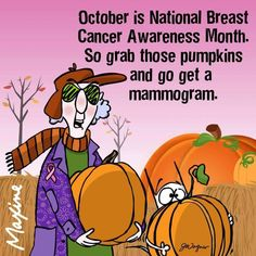 Maxine ~ October is National Breast Cancer Awareness Month. So grab those pumpkins and go get a mammogram. Breast Cancer Quotes, Breast Cancer Survivor, Breast Cancer Awareness, Breast Cancer Fundraiser, Go Pink, Breast Cancer Support, Aunty Acid, Margaritas, Humor