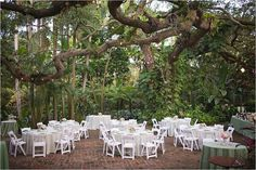 Sylvie And Eric Said Their I Do S In The Gorgeous Sunken Gardens Downtown St