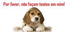 Teste em animais??? Cadê os avanços tecnológicos e científicos?????