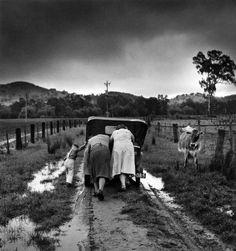Tobacco Road. Ovens Valley, Victoria, Australia. 1956. Photographer: Jeff Carter
