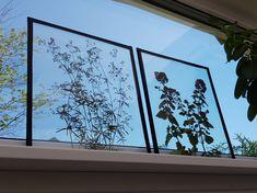 Pressade blommor mellan glasskivor med eltejp som ram  https://www.instagram.com/jossanspysselochbak/