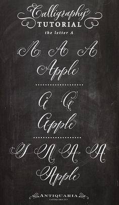 """Antiquaria: Calligraphy Tutorial: the Capital Letter """"A"""""""