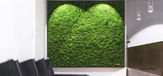 ❀ Vertical wall greening with 3D ball moss / poll Moss. Suitable for exhibition construction, shops, office and surgery. 100% Nature ✓ 0% Care ✓ ❀